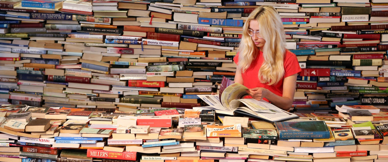 book addict slider